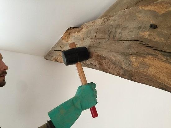 Traitement du bois en Vendée détermitage