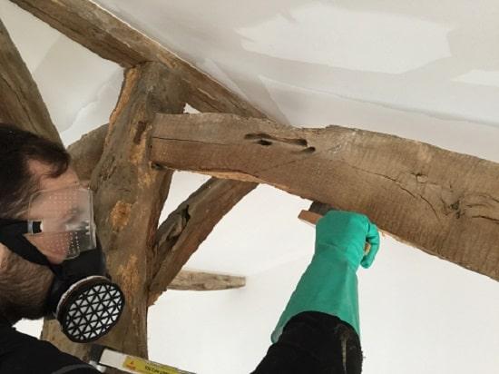 Traitement du bois en Vendée