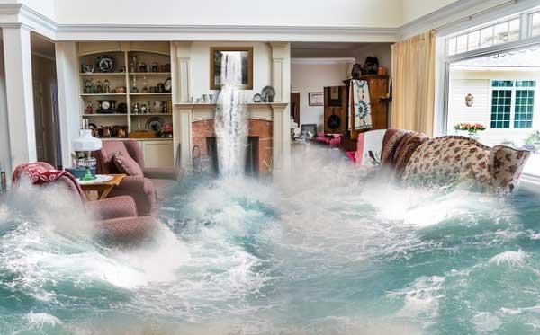 Représentation du vague d'eau de mer, dans un salon.